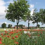 SOS-Dorfgemeinschaft Grimmen-Hohenwieden - Zum Vergrößern bitte klicken
